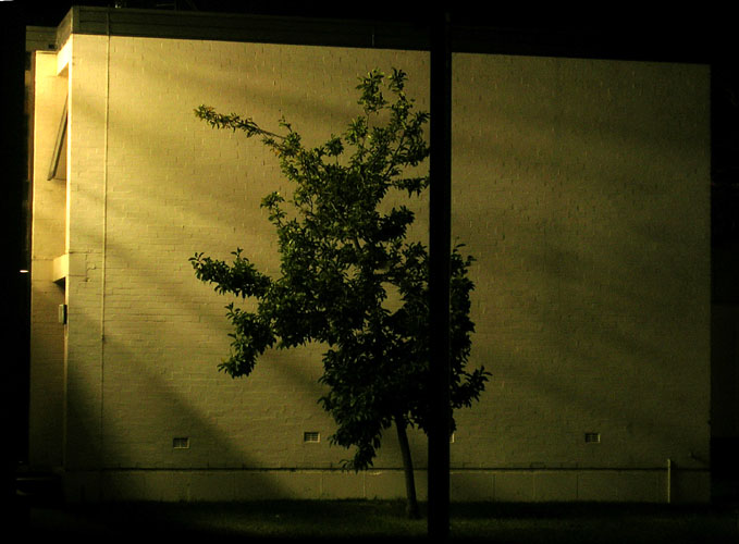 20040420-021-nightLight.jpg
