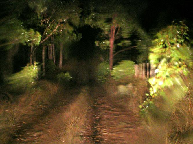 20040429-023-rain.jpg
