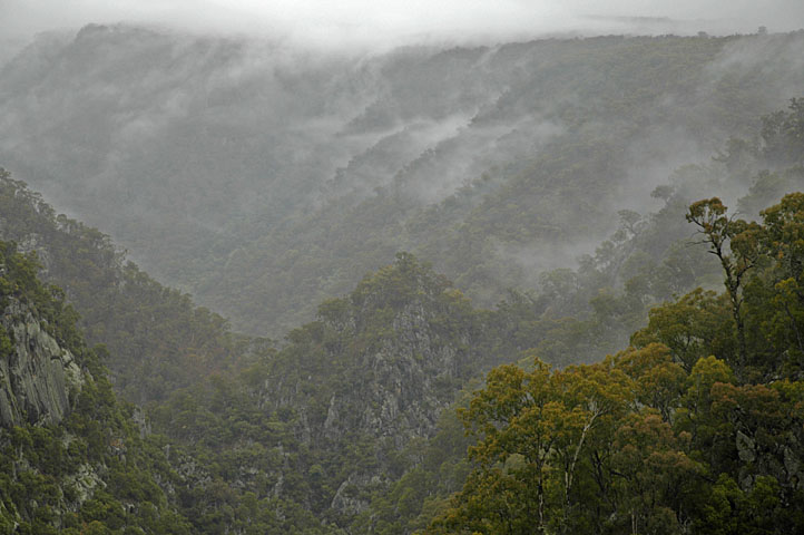 Gorge with mist