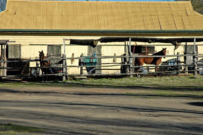 Stables at the racecourse
