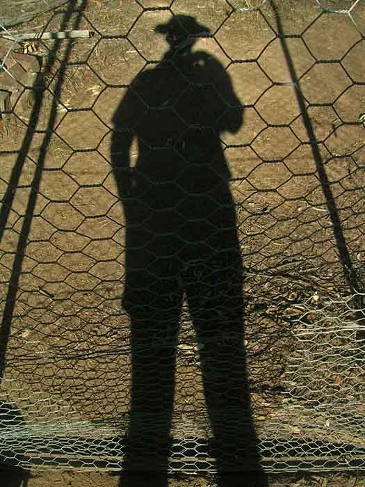 My shadow through the dog run netting