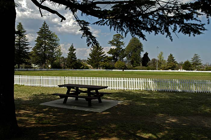 Cricket pitch looking for players