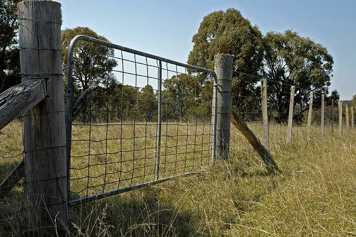 Creek Paddock gate