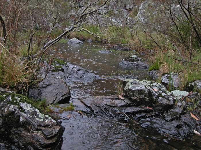 Creek 4