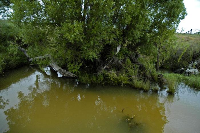 Burying Ground Creek