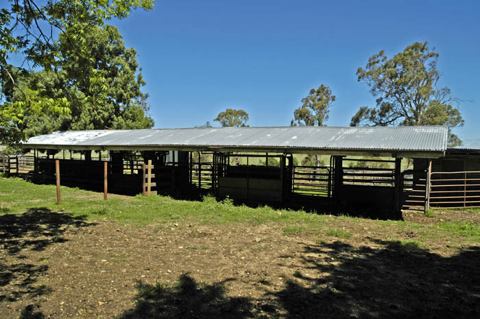 Bull shed