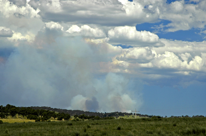 Bushfire 2