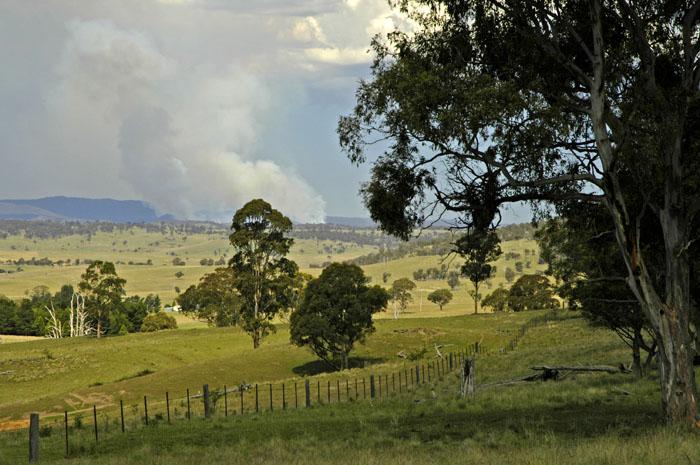 Bushfire 3