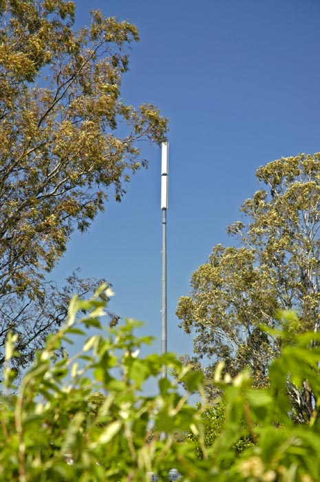 Cellphone base antenna