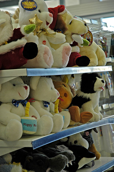 Toy animals awaiting a home