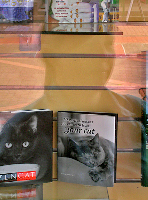 Book i shop window, plus reflection