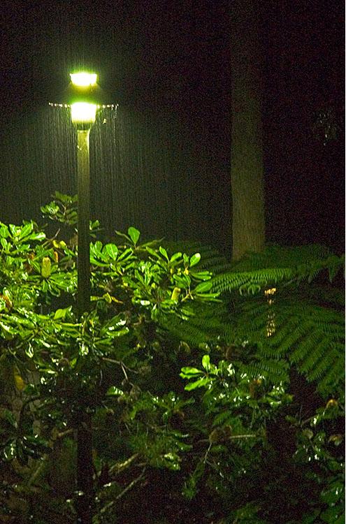 Rain in the (almost) tropics