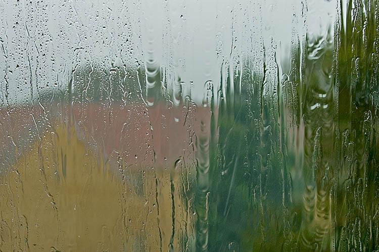 Storm rain lashing window