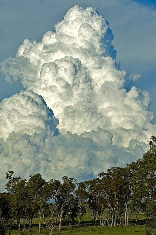 Dirty, fluffy cloud