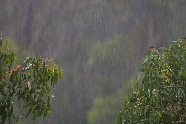 And still it rains