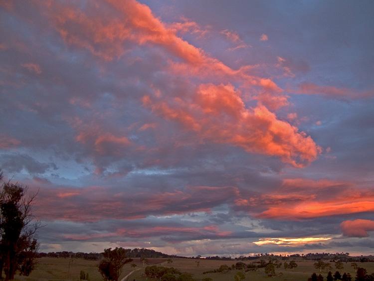 Pink cloud embers