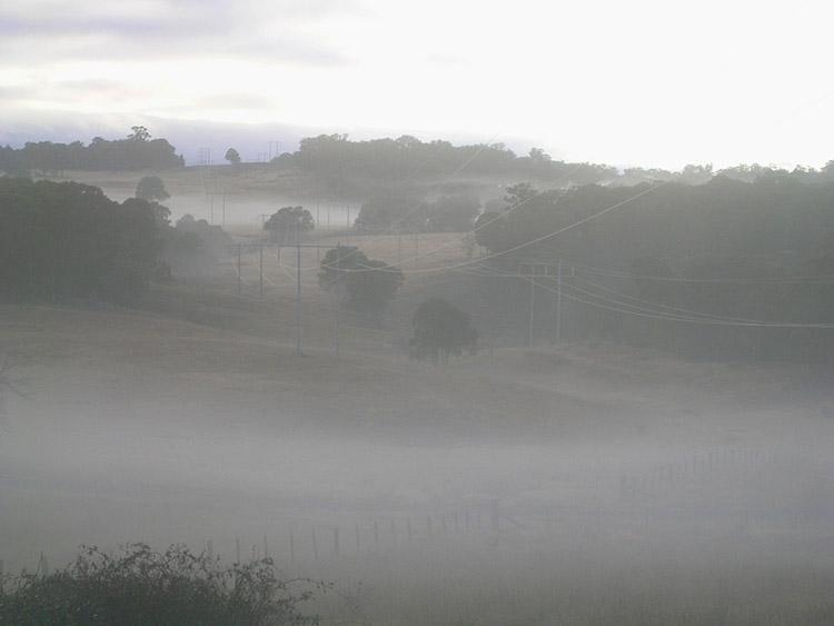More morning mist