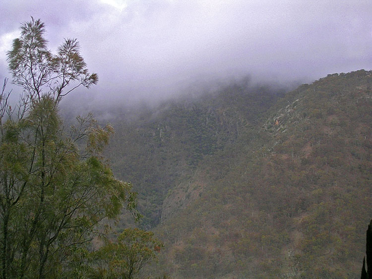 Low cloud across the gorge