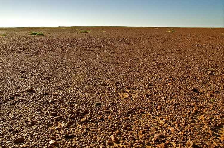 Sturt's Stony Desert