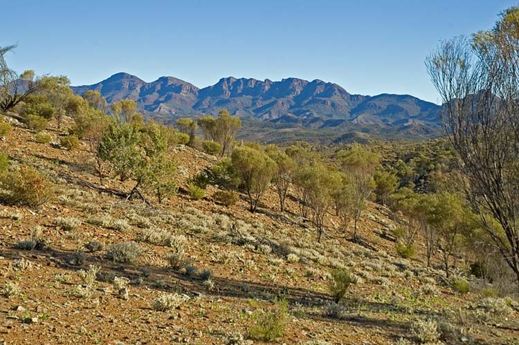 Glimpse of part of the Flinders Ranges