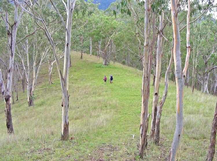 Riverside Ridge