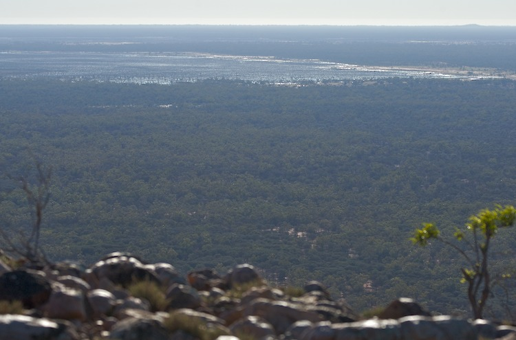 From Mt. Oxley, Bourke