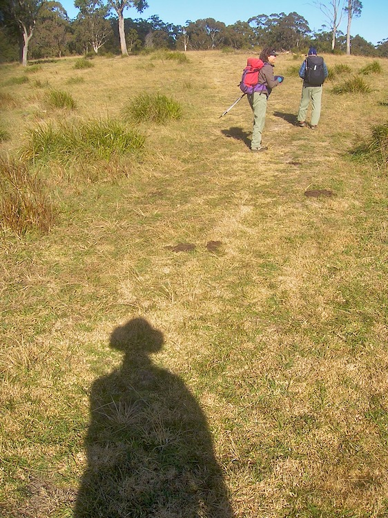 Shadow following